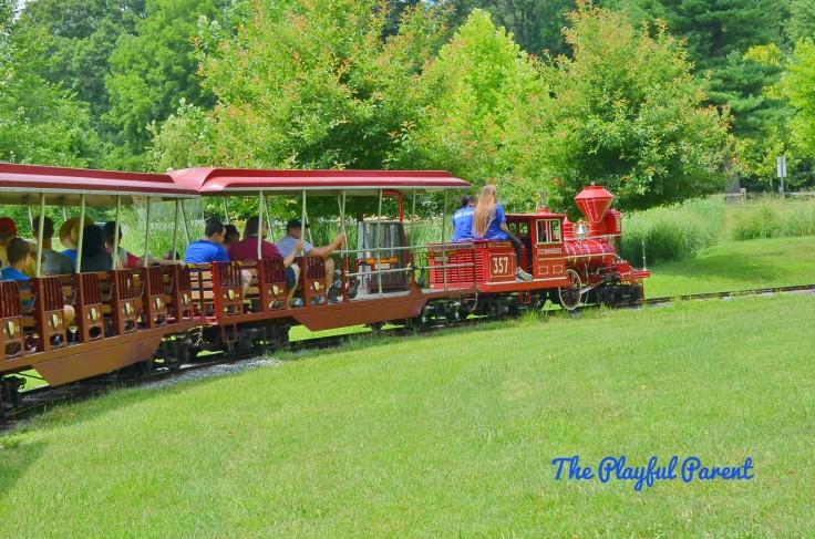 W- Train