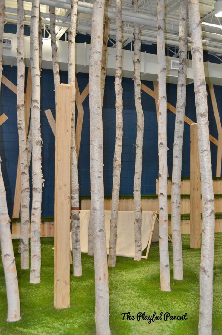 BADLANDS- FOREST.jpg